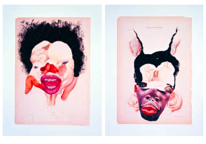 Wangechi Mutu, Classes of Uterine Tumors, 2006, digital prints and mixed media collage, 12 works, 57.5 x 42.5cm each, Courtesy of the Artist and Sikkema Jenkins & Co., New York