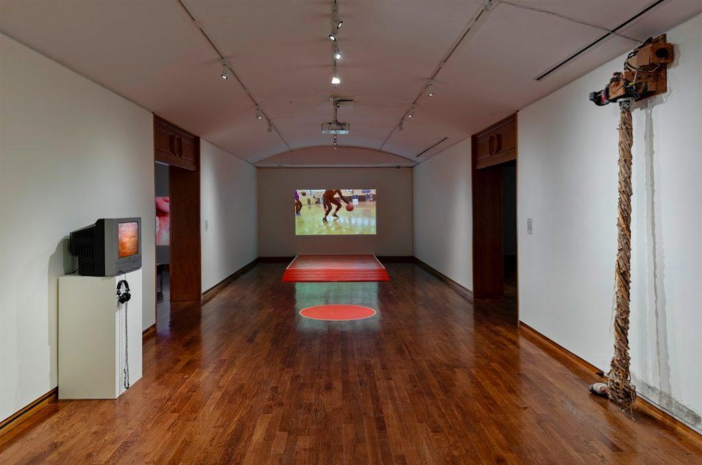 Flesh of the World installation shot, University of Toronto Art Centre