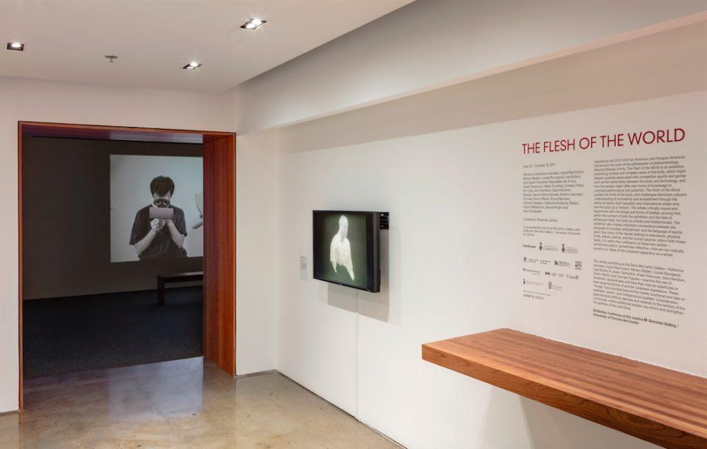 Flesh of the World installation shot, Doris McCarthy Gallery, University of Toronto Scarborough