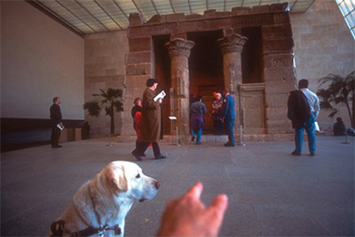 Link to Talking Blind: Museums, Access and the Discursive Turn