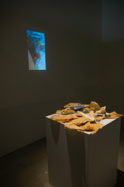 Raphaëlle de Groot, Study 5, A New Place, 2015, video, 8:17 minutes