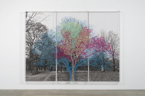 Link to Artforum Critics' Pick: Charles Gaines: Numbers and Trees Central Park Series II